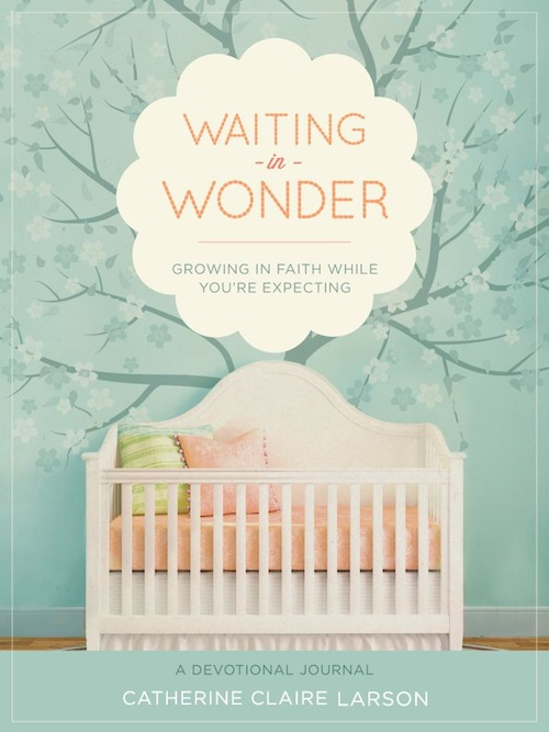 Waiting in Wonder - Catherine Claire Larson
