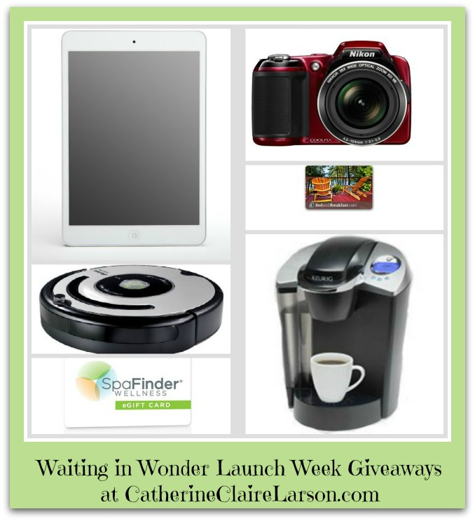 Waiting in Wonder Giveaways EC