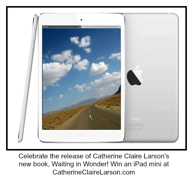iPad mini 16 GB Giveaway
