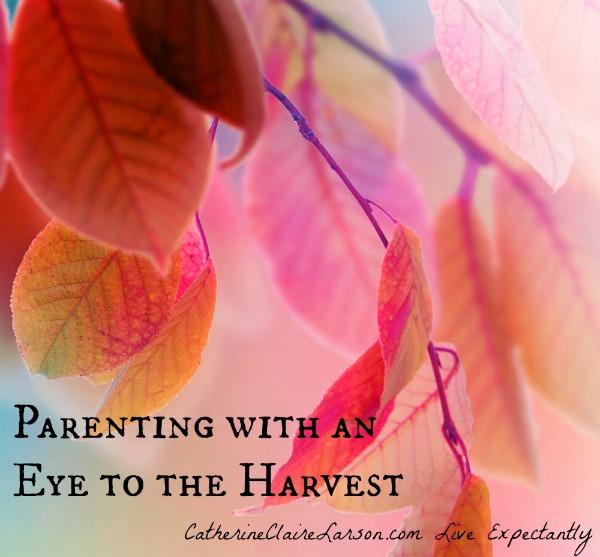 Harvest Parenting