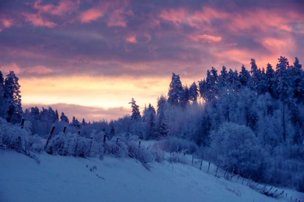 winter-dawn-2